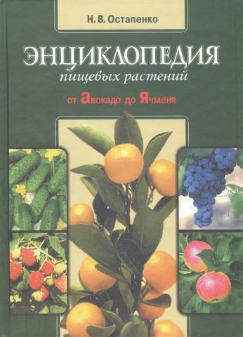 Книга Н.В. Остапенко